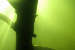 Hooaja suur avapidu vee peal ja all...